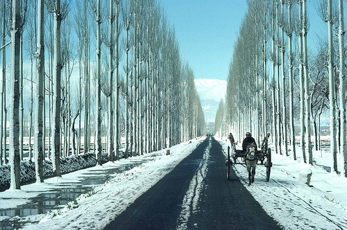 on-way-to-gulmarg.jpg